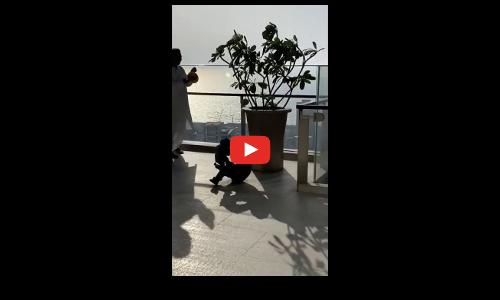 जनता कर्फ्यू : मुकेश अंबानी ने अपने घर पर घंटी बजाकर सराहना की, देखें वीडियो