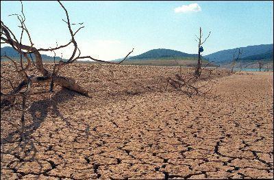 मध्यप्रदेश के 4,000 गांव सूखे की चपेट में