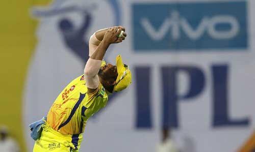 आईपीएल में 100 कैच पकड़ने वाले पहले क्रिकेटर बने रैना