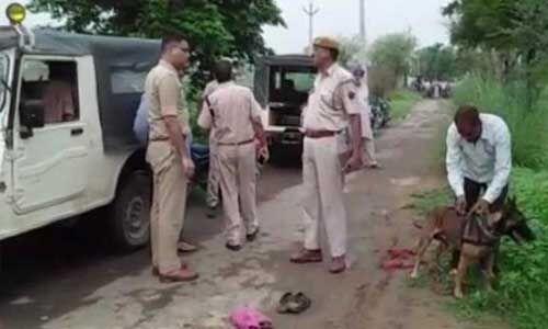 अलवर लिंचिंग मामले में पहलू खान पर चार्जशीट दायर, भीड़ ने की थी पीट-पीट कर हत्या