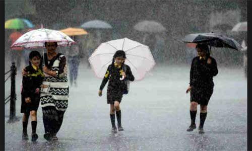 बारिश के मौसम में बीमार होने से बचना है तो भूलकर न करें इन चीजों का सेवन
