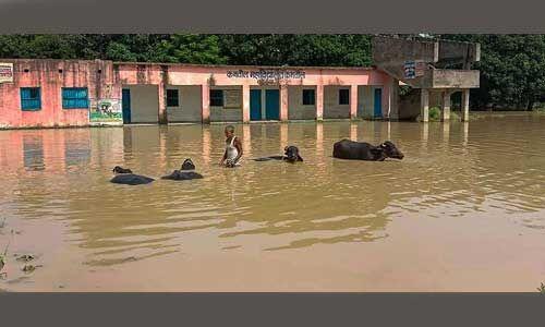बिहार में कई जिलों में सूखे की स्थिति तो कुछ में बाढ़ जैसे हालात, पढ़े पूरी खबर