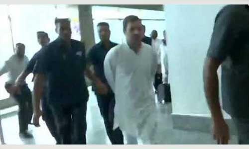 श्रीनगर एयरपोर्ट पहुंचे राहुल गांधी समेत विपक्ष के 11 नेता