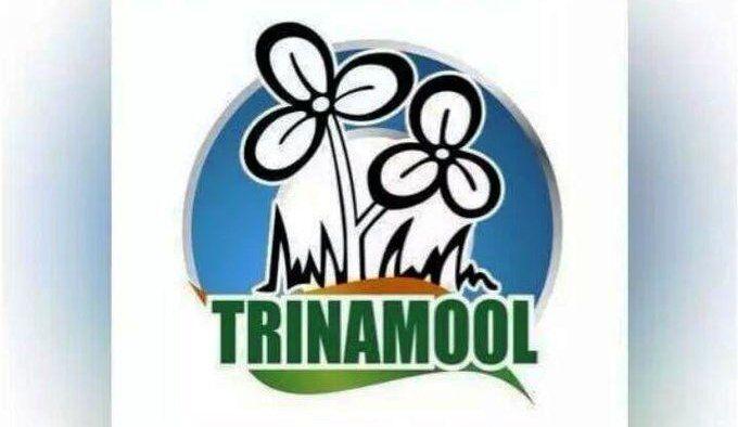 पश्चिम बंगाल उपचुनाव में टीएमसी ने तीनों सीटों पर परचम लहराया, ममता बोलीं - जनता की जीत