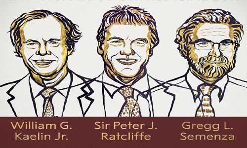 चिकित्सा के क्षेत्र में तीन वैज्ञानिकों को संयुक्त रूप से नोबेल पुरस्कार