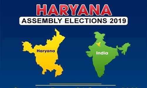 हरियाणा विस चुनाव : चार बजे तक 51 फीसदी मतदान