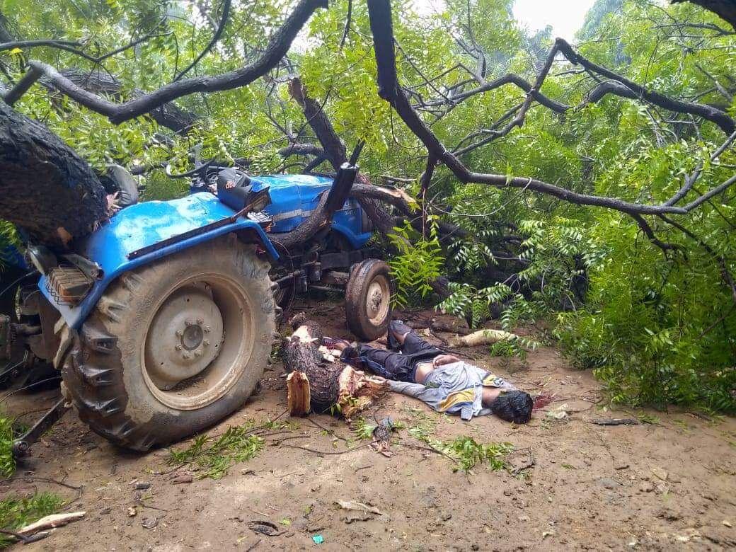 गजराजराजा मेडिकल कॉलेज में भाई को खाना देने पहुंचे युवक की पेड़ गिरने से मौत