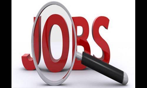 देश में 14 लाख से ज्यादा नए रोजगार पैदा हुए, पढ़े पूरी खबर