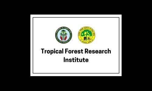 उष्णकटिबंधीय वन अनुसंधान संस्थान में निकली भर्ती