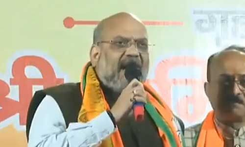 अरविंद केजरीवाल ने दिल्ली की जनता से पांच साल तक किये सिर्फ झूठे वादे : शाह