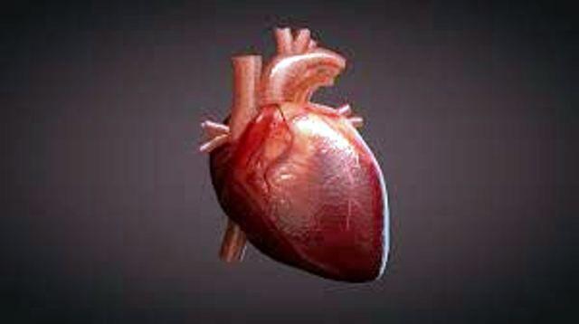 ग्वालियर : निःशुल्क ह्रदय रोग परीक्षण शिविर का होगा आयोजन