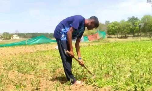 रामचन्द्र सांगा खेती-बाड़ी कर अपने को रख रहे हैं फिट