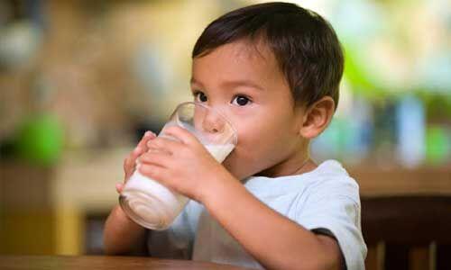 इम्युनिटी को मजबूत करता है गाय का दूध