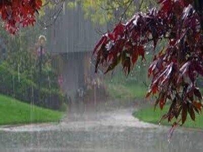 निसर्ग का असर -प्रदेश के कई हिस्सों  में हो रही है बारिश, 18 जिलों में ऑरेंज अलर्ट