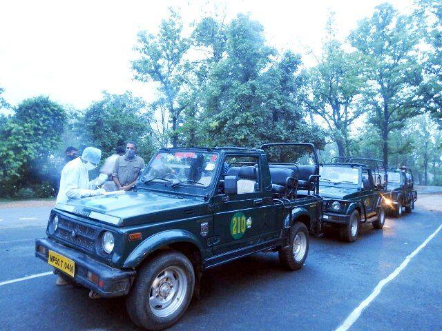 कान्हा टाइगर रिजर्व में दोबारा शुरू हुआ पर्यटन