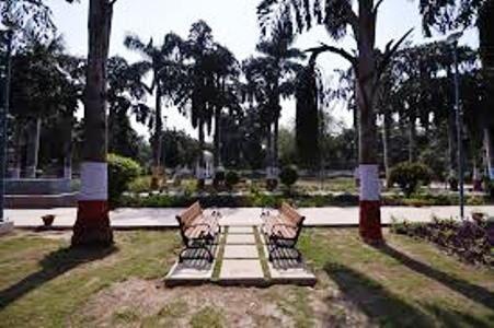 उद्यानों, परिसरों में जाना बंद हुआ तो आंगन, छतों व कक्षों को बनाया योग केन्द्र