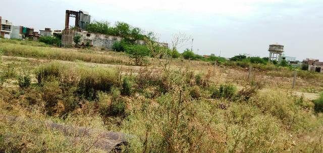 नारायण विहार में बिक रहे शासकीय जमीन पर भूखंड, खड़े हो गए अवैध मकान