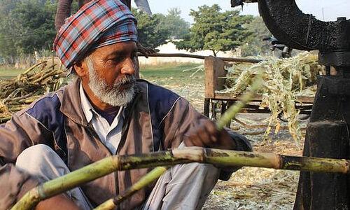 उप्र में चीनी मिलें किसानों को ऋण पर देंगी बीज,खाद, कीटनाशक, नहीं लेंगी कोई ब्याज