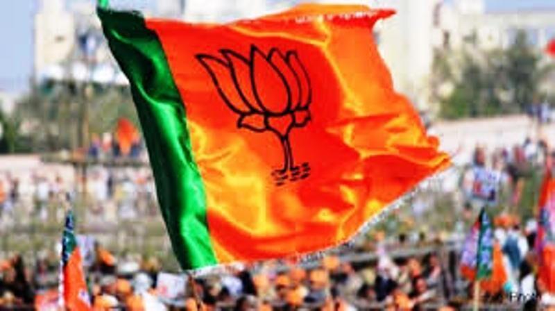 भाजपा ने की 28 सीटों पर उम्मीदवारों के नाम की घोषणा