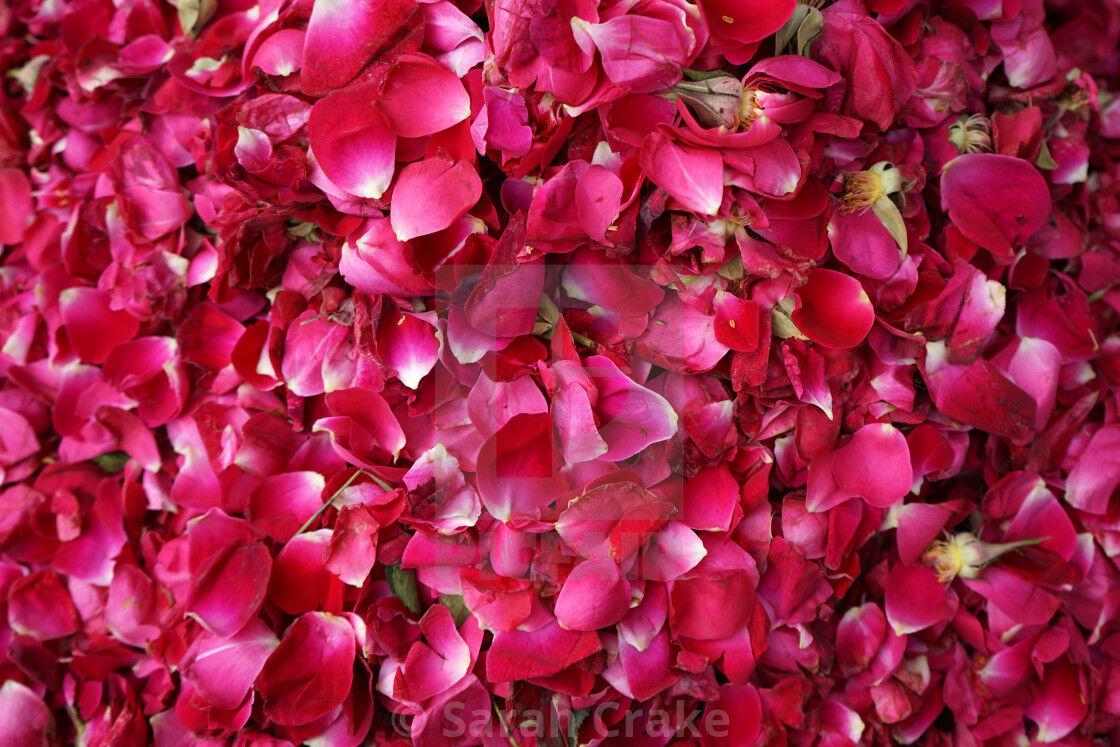 फूलों से हासिल करें कुदरती खूबसूरती