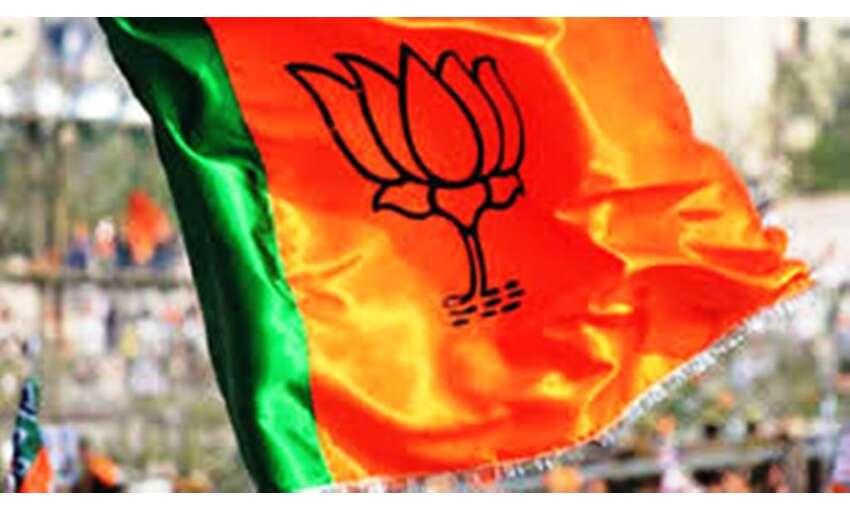 भाजपा नया संसदीय मॉडल और संघ की विचारशक्ति