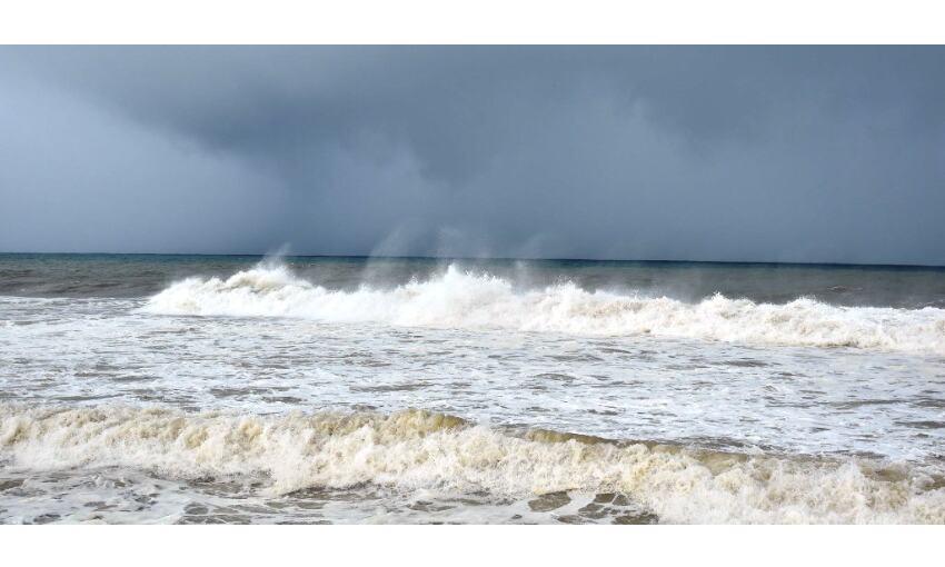 केरल में ताऊ ते का असर : शुरू हुई मूसलाधार बारिश, कई पेड़ उखड़े