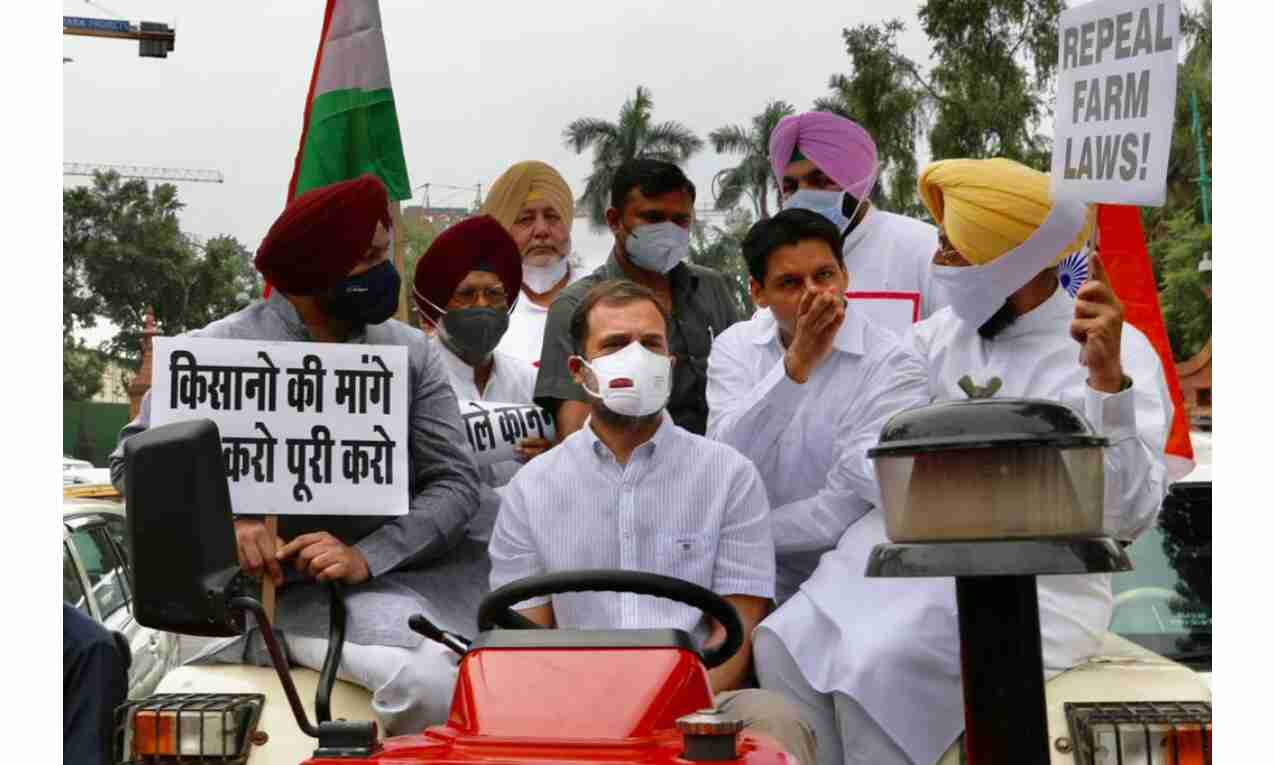 राहुल गांधी ट्रेक्टर लेकर संसद पहुंचे, सुरजेवाला सहित कई नेता गिरफ्तार