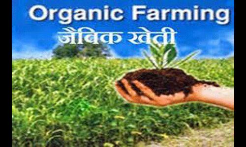 जैविक खेती की ओर लौट रहे किसान