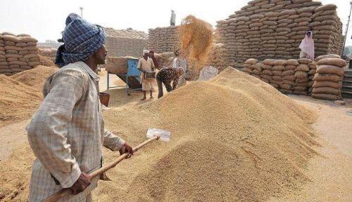 केंद्र ने दी किसानों को सौगात, खरीफ की फसल पर एमएसपी डेढ़ गुना बढ़ी