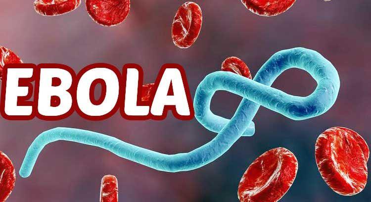 इबोला का कहर शुरू, कांगो में अब तक 55 मरे
