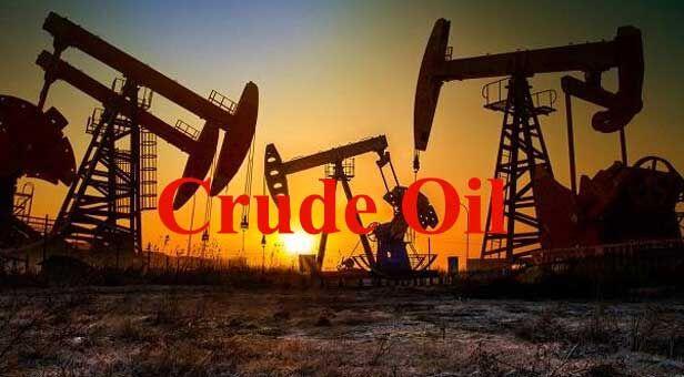 ईरान से कच्चे तेल के आयात में की कटौती : भारत