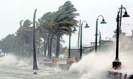 गज तूफान से प्रभावित तमिलनाडु को 353 करोड़ रुपये की सहायता