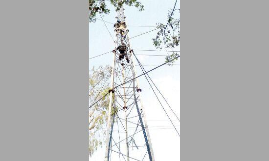 फिर टॉवर पर चढ़ा विक्षिप्त युवक कड़ी मेहनत के बाद पुलिस और दमकल दस्ते ने उतारा