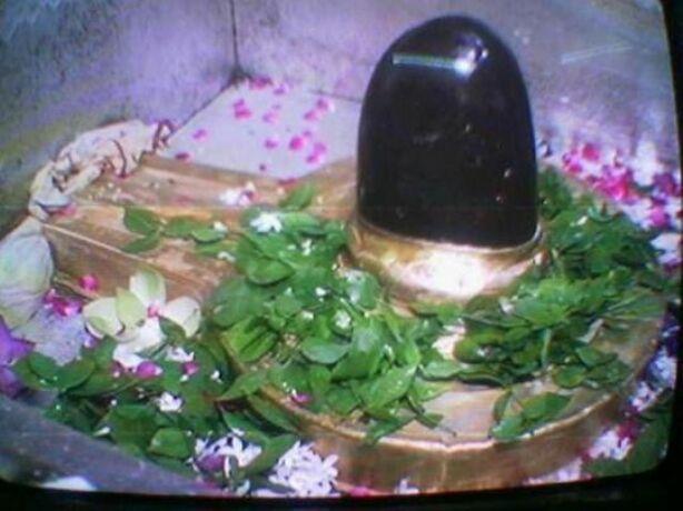 शिव को अनाज चढ़ाने का है विशेष महत्व