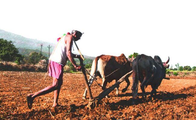 कर्नाटक में कांग्रेस सरकार का एक सच यह भी, करते रहे 15 किसान हर सप्ताह आत्महत्या